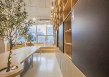 Desain Interior Kantor Minimalis  Natural